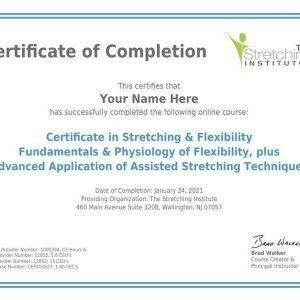 stretching flexibility physiotherapy course program